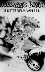 Butterfly Wheel